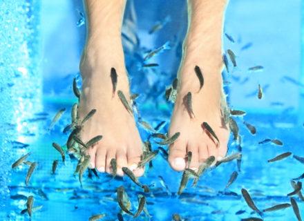 Kalapedikyyri jalkahoidolla tai ilman alk. 15€ (säästä jopa 61%)